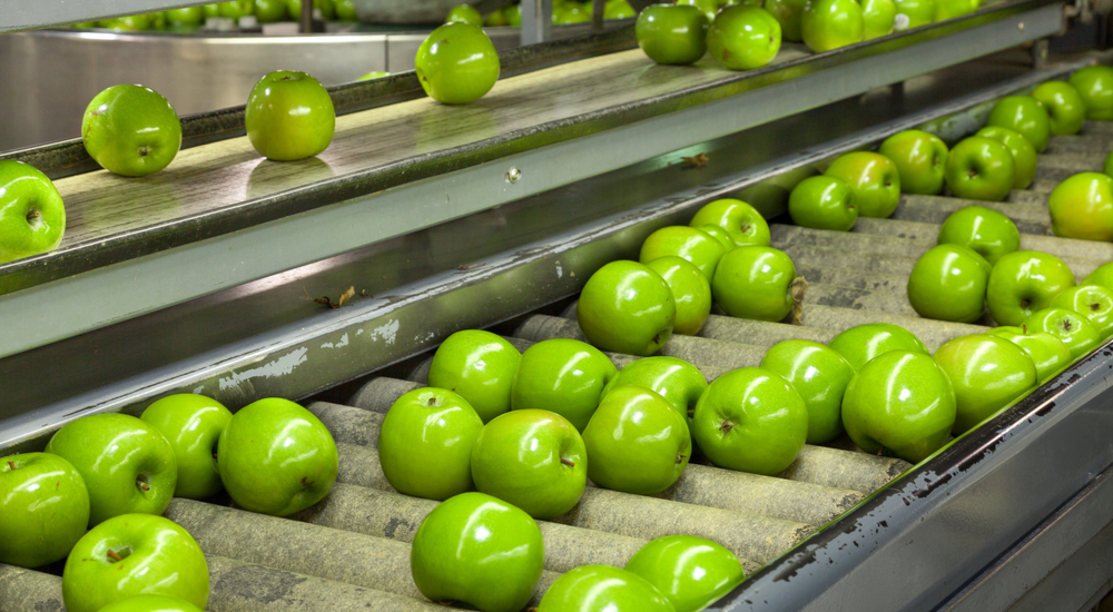 See How Air Bearings Can Improve Food Processing and Packaging!