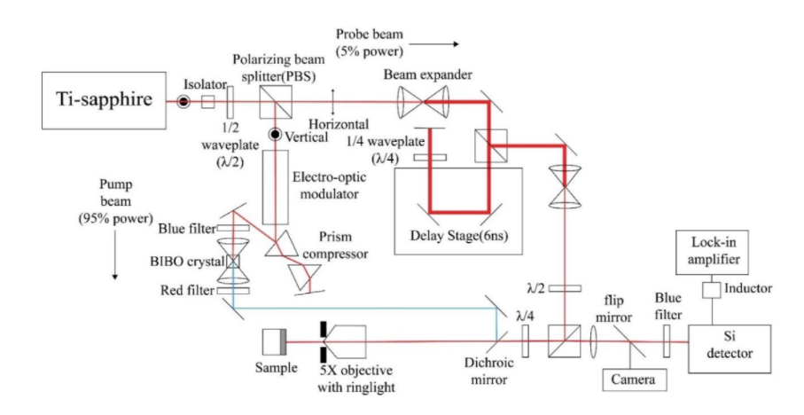 Diagram of pump-probe experimental setup.